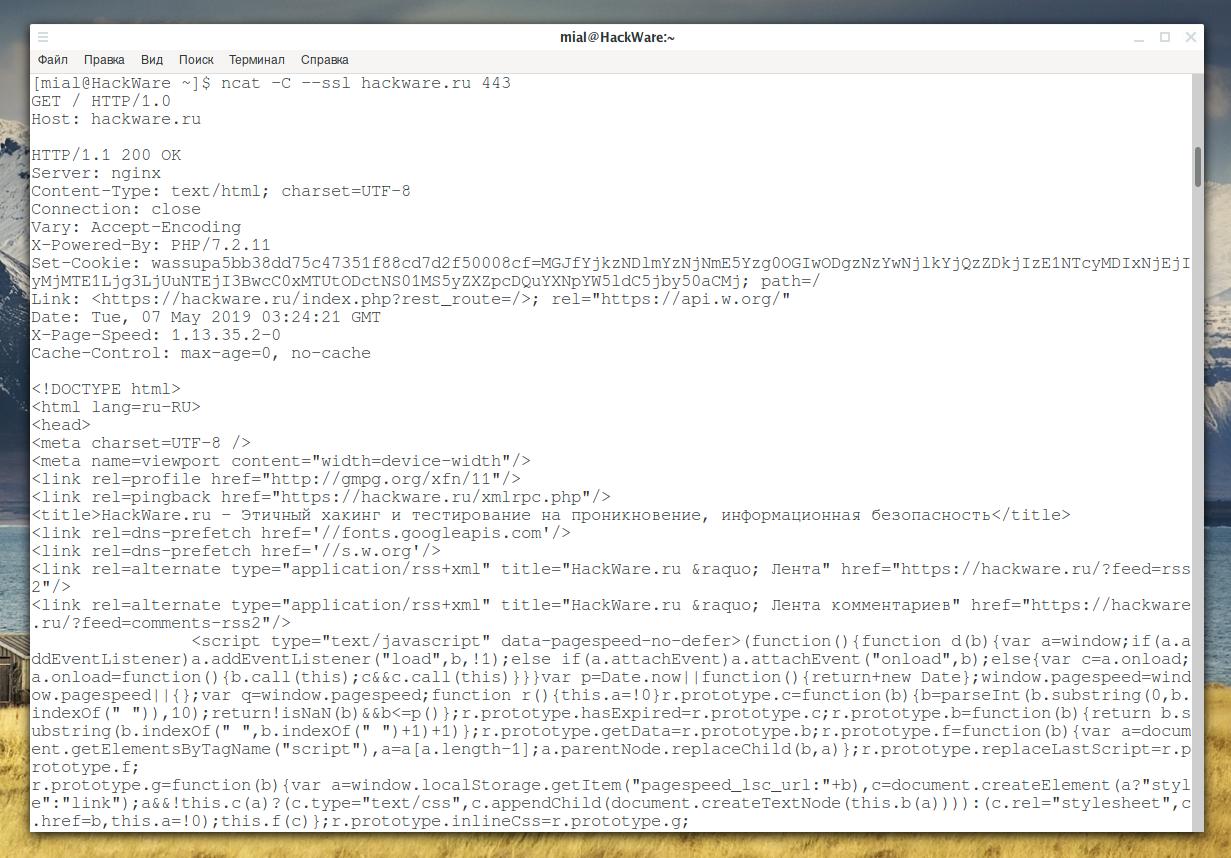 Как пользоваться netcat (nc), ncat - HackWare ru